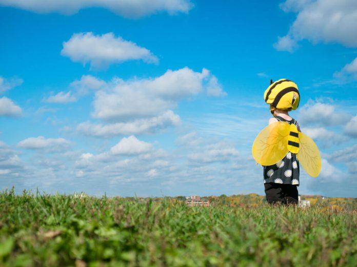 disfraz de abeja