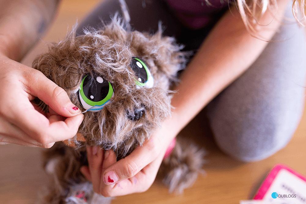 adoptar una mascota